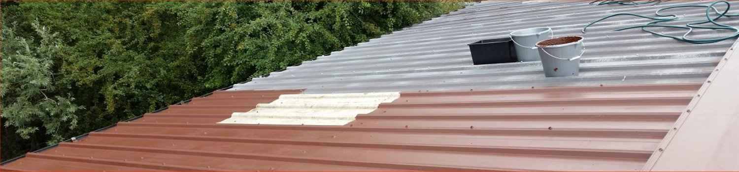 paint over existing roof